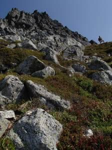 Steep alpine meadows