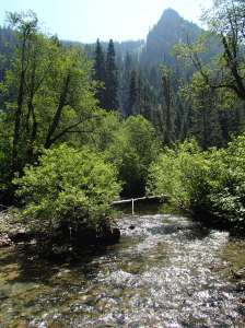 """The creek"" Actually West fork miller river"