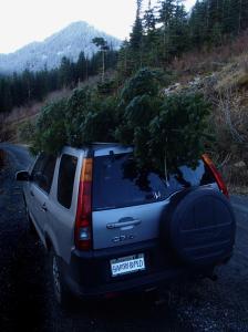 Better do a brake check!