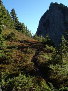 Pretty alpine trails