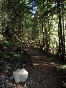 Nice wide trail