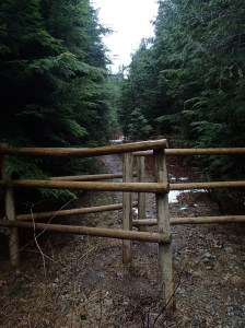 Mystery Gate