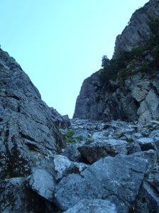 """Looking up """"The Gully"""" in snowfree conditions"""