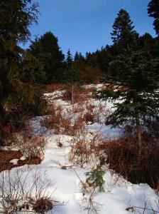 High terrain along old trail