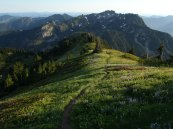 Alta Mountain meadows